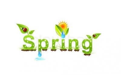 My Top 10 Things to Welcome Spring