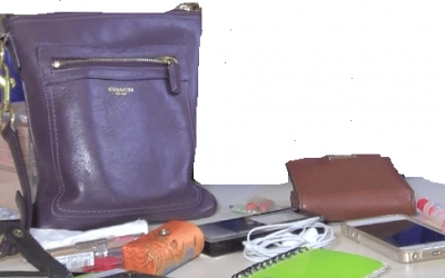 "Here are some items from our ""What's in My Little Purse"" Video"
