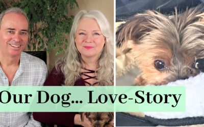 A Love Story About Our Dog